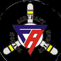 Falcon Aircraft logo